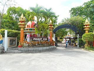 Best Things To Do In Phuket 6