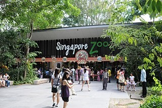 Best Things To Do In Singapore 2