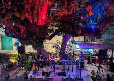The Pokok Penang