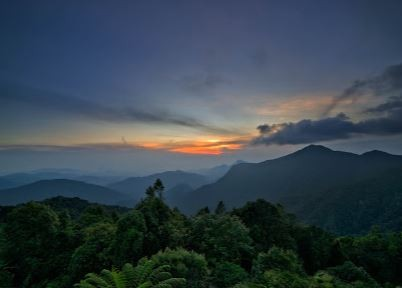 Best Things To Do In Cameron Highlands 4